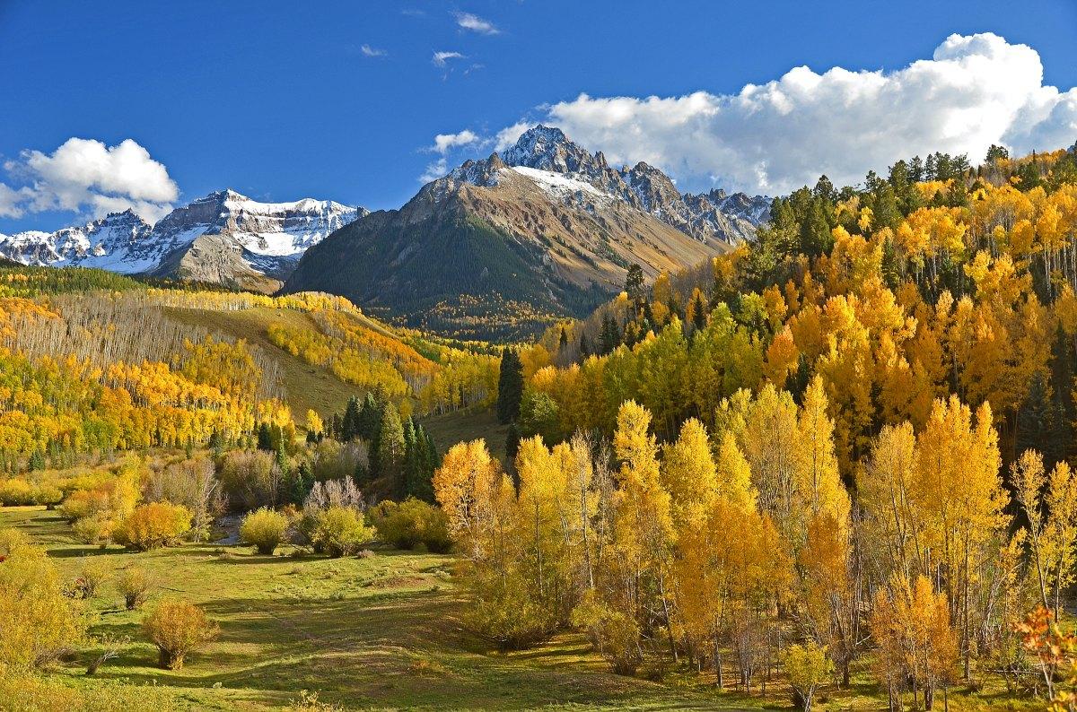 Golden Green Land